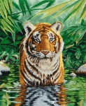 bk1151-tiger-pool