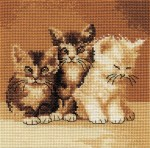 Three_Cute_Cats_4e4687ddda98c.jpg